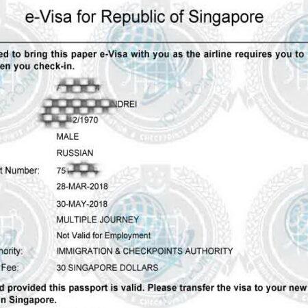 Электронная виза в Сингапурдля граждан Украины