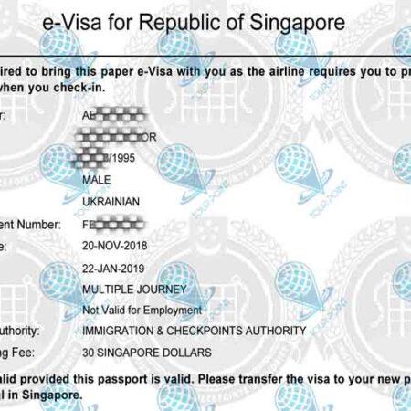 Электронная виза в Сингапуркартинка