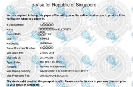 Электронная виза в Сингапурфото
